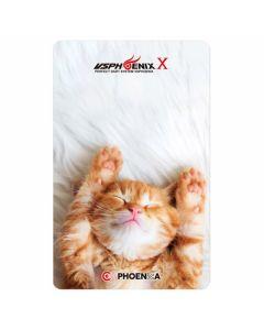 """Card"" Phoenix Card 2018029"