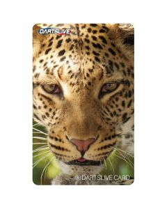"""Limited"" Discontinued DARTSLIVE card #26-15"