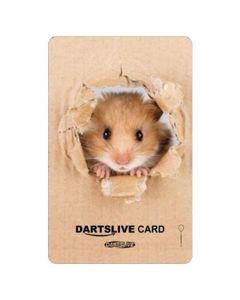 """Card"" DARTSLIVE CARD #041-1"