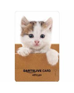 """Card"" DARTSLIVE CARD #041-6"