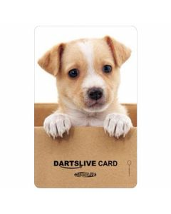 """Card"" DARTSLIVE CARD #041-11"